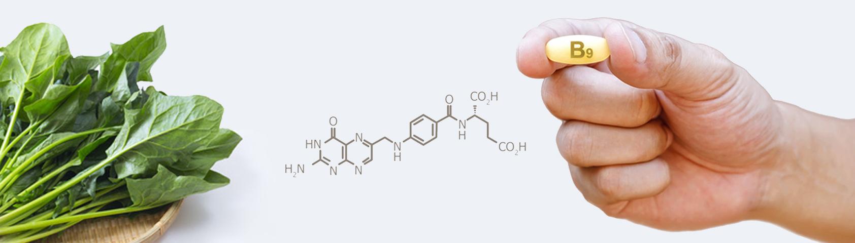 Folsäure/Vitamin B